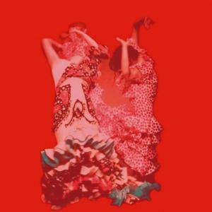 Manual del Baile Flamenco